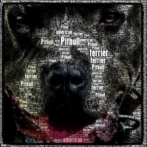Standard de la raza American Pitbull Terrier